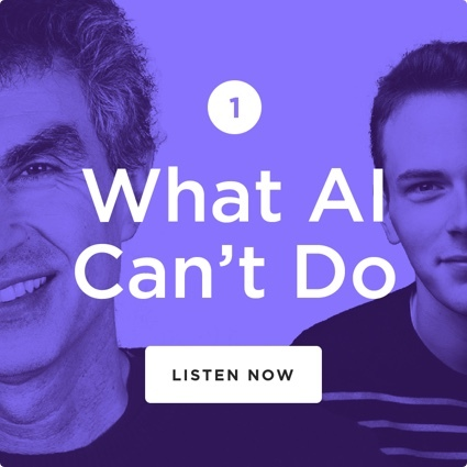 What AI Can't do