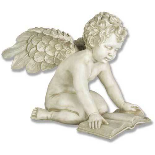 Angel Quinn Winged With Book