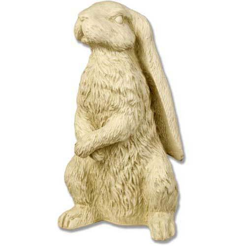 Rabbit with Long Ears 13