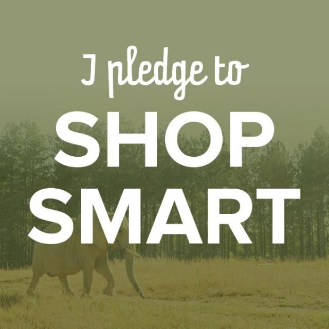 I Pledge To Shop Smart