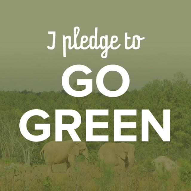I Pledge To Go Green