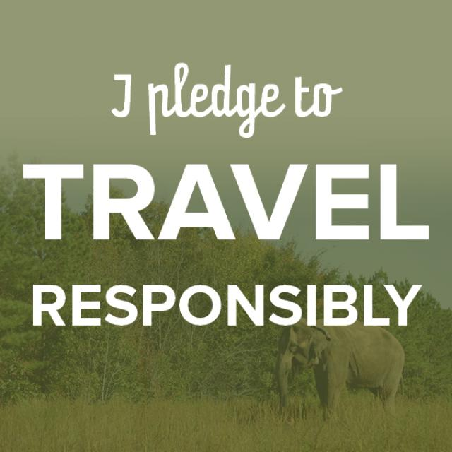 I Pledge To Travel Responsibly