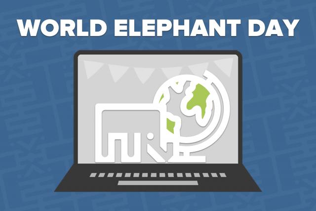 World Elephant Day *Virtual* Event
