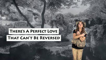 PerfectLove1