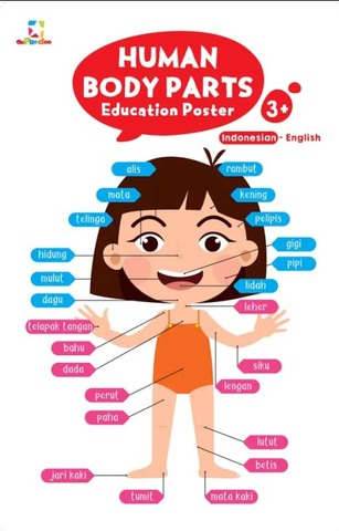 Opredo Education Poster: Human Body Parts