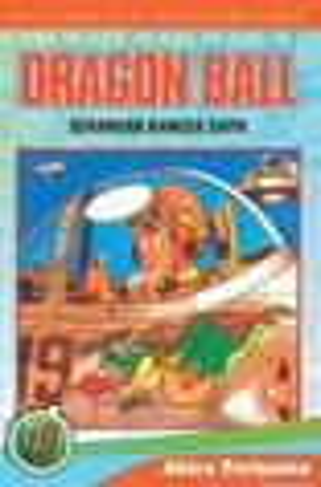 Dragon Ball Vol. 19