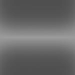 Rhinodize Graphite Gray