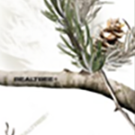 Elite Bow Color - Realtree AP Snow®