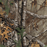 Elite Bow Color - Realtree Xtra®