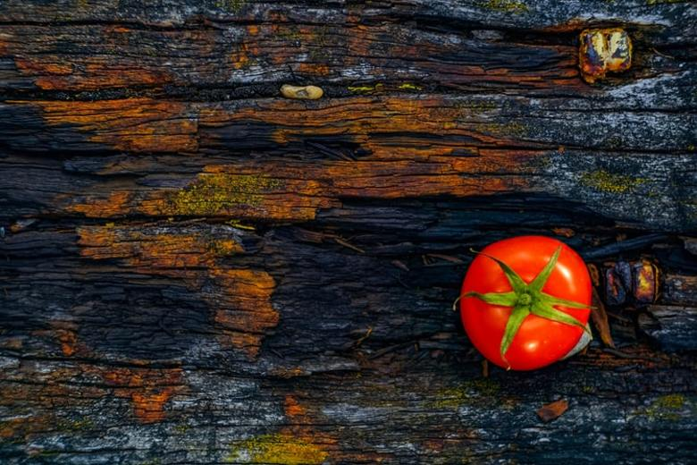 Can a Lowly Tomato Make You More Productive?