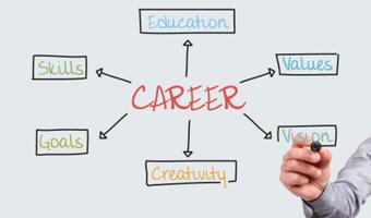 Career brainstorm web stock