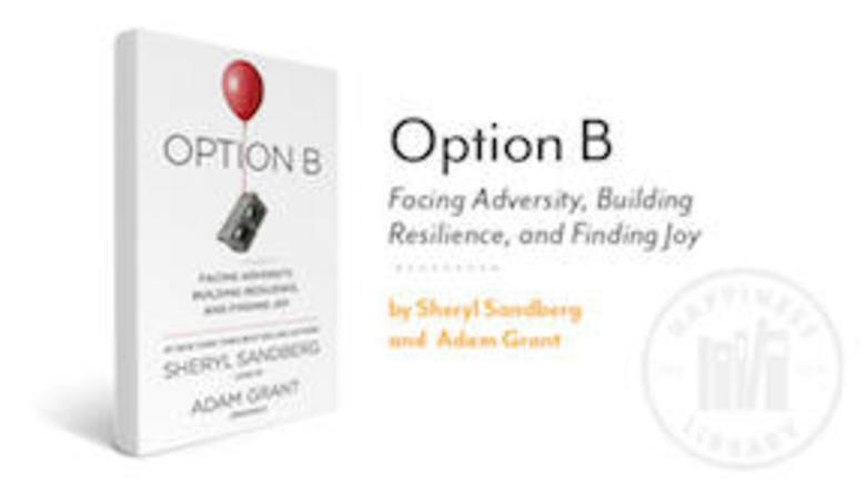 Option b2