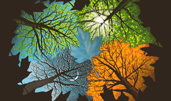 Four seasons in one dayhtzdetail
