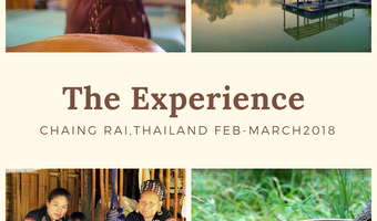 The experience feb 2019 %282%29