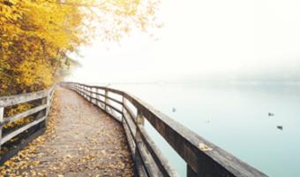 Fall photo 450x180