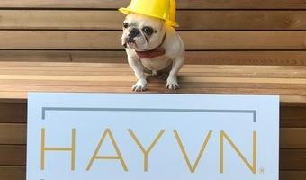 Howie at hayvn