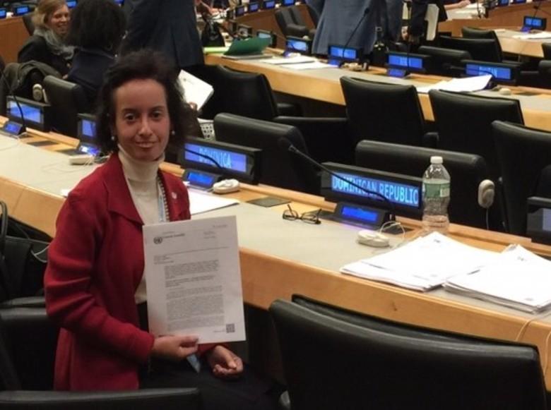 Claudia LaRue Successfully Negotiates United Nations Resolution on Partnerships