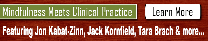 Online Course: Mindfulness Meets Clinical Practice