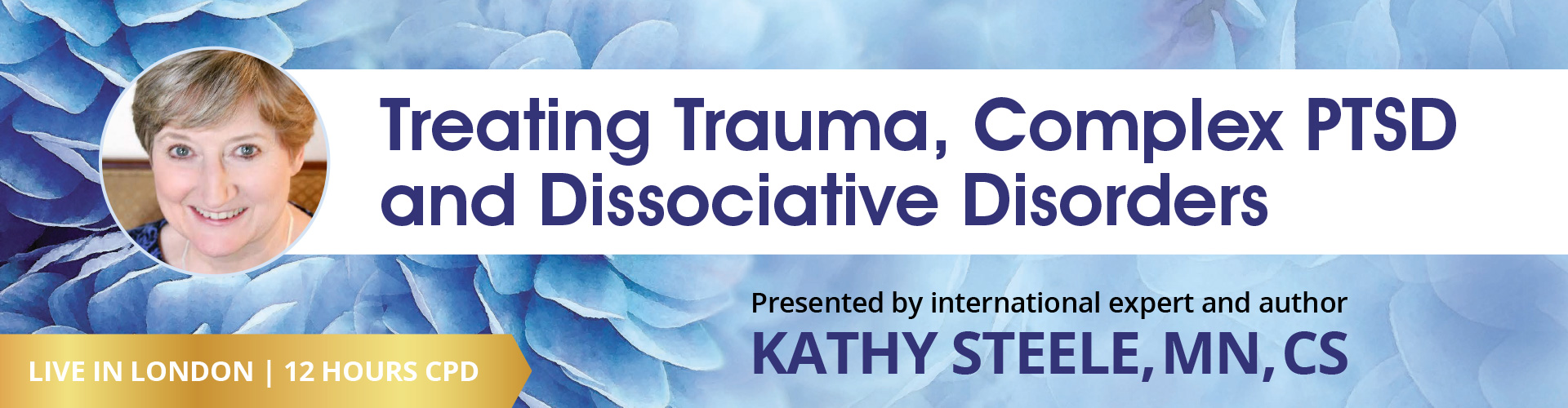 Treating Trauma, Complex PTSD and Dissociative Disorders