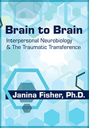 Image of Brain to Brain: Interpersonal Neurobiology & The Traumatic Transferenc