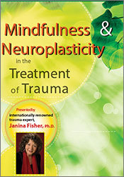 Image of Mindfulness and Neuroplasticity in the Treatment of Trauma