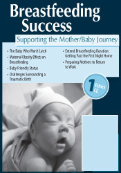 Image of Breastfeeding Success: Supporting the Mother/Baby Journey