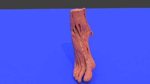 Right foot - Muscle model STL file from converted CT scan