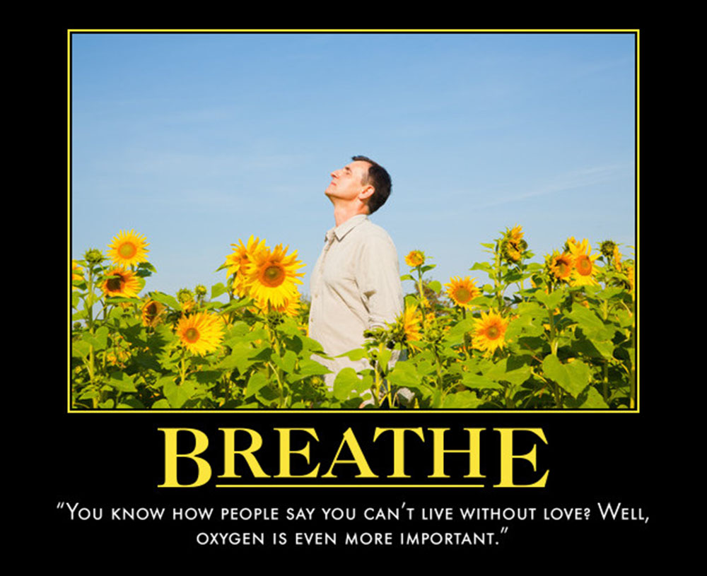 House Quote Motivational Poster Breathe | eMedCert