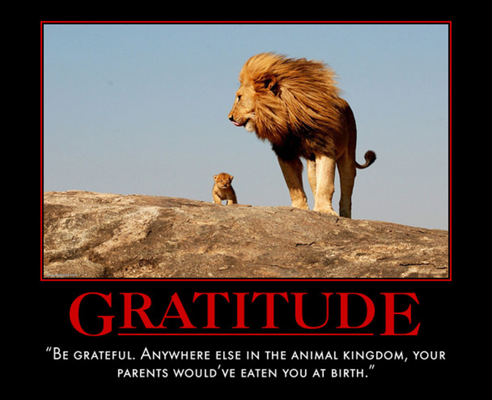 House Quote Motivational Poster Gratitude | eMedCert