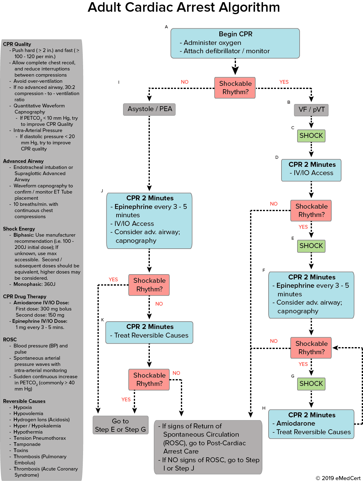 ACLS Adult Cardiac Arrest Algorithm