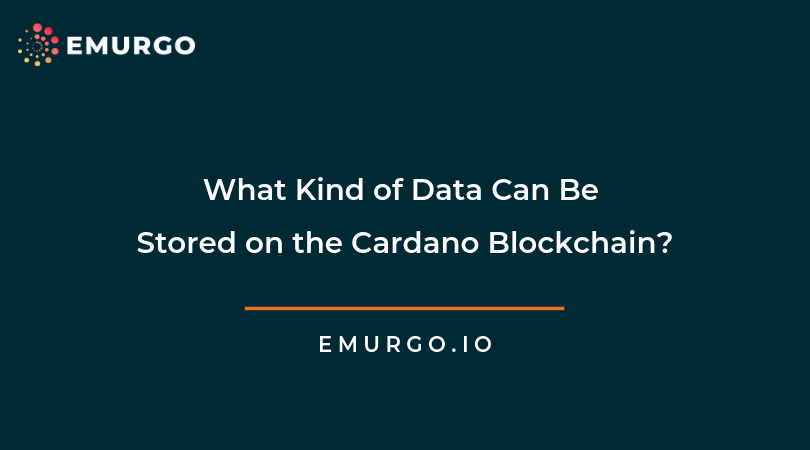 What Kind of Data Can Be Stored on the Cardano Blockchain?