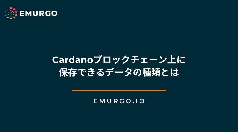 Cardanoブロックチェーン上に保存できるデータの種類とは