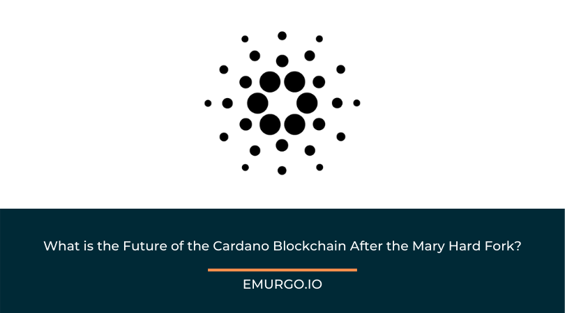 What is the Future of the Cardano Blockchain After the Mary Hard Fork?