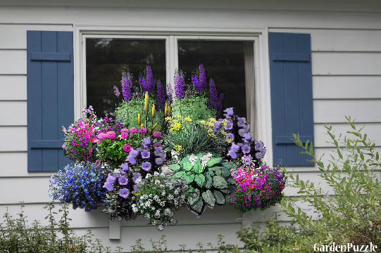 Etonnant Window Box Garden