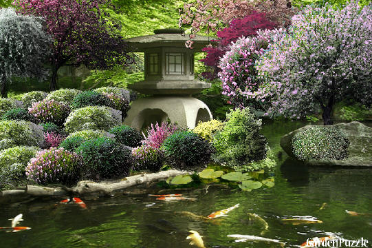 Gardenpuzzle project korean garden house and koi pond for Japanese koi pond garden design