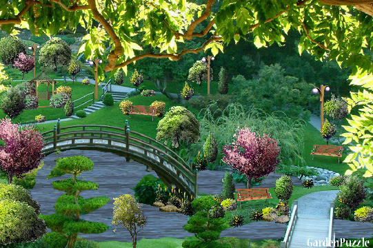 Japanese water garden home ideas for Stobo water gardens