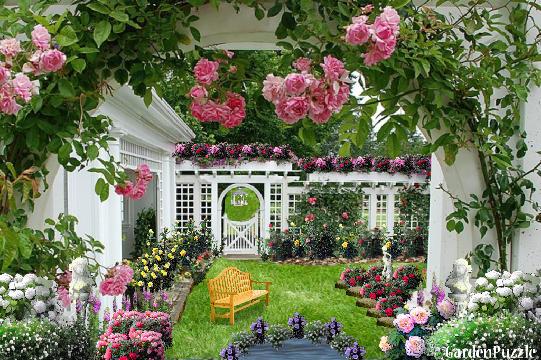 Just A Rose Garden