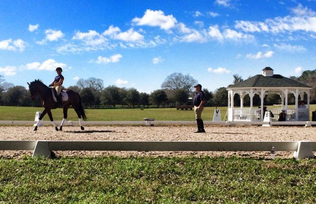 David teaching Ellen Doughty and Sir Oberon on Monday at the Ocala Training Sessions. Photo from the USEF Eventing High Performance Facebook page.