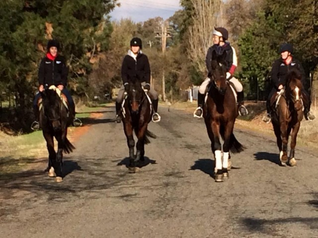Team Dragonfire on a hack in December. Photo by Clair Thunes
