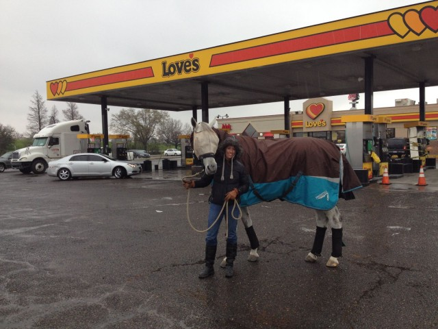 Kathy Rivera and Royal Lufttanzer waiting out the traffic in Louisiana. Thanks to Amanda Merritt for the photo.