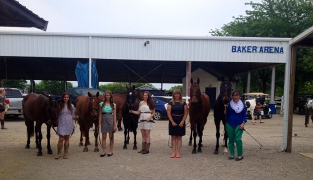 All 5 horses from LeCheval Pass the 1st horse inspection: Photo Credit Debbie McBride
