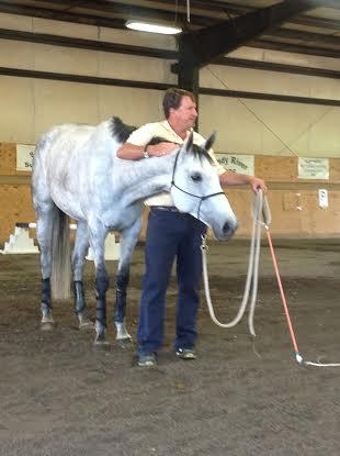 David O'Connor works a 4-year-old OTTB mare. Photo by Kim Bradley.