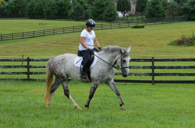 Yes, I'm looking down, but this was my first time back in the saddle since my crash. Photo by Laurel Murphy.