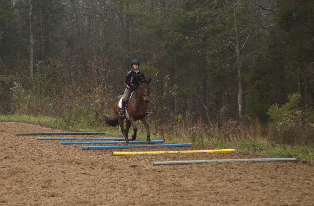 Emily Gray and her pocket rocket mare, All That Jazz, work over ground poles. Photo by Leslie Threlkeld