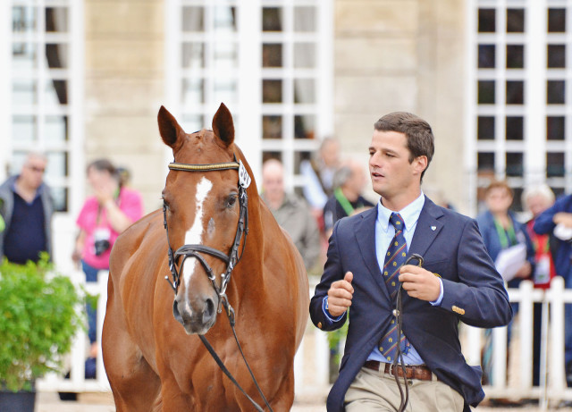 Francisco Seabra and Zarthago at WEG. Photo by Jenni Autry.