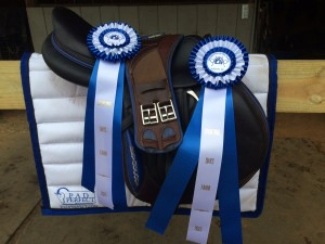Really great things have been happening for me and the horses since partnering with these 2 great companies: Devoucoux & Pad Perfect.