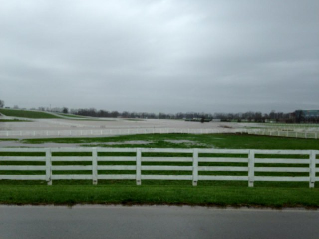 The KY Horse Park Friday around noon.  Photo Credit: Courtney Carson