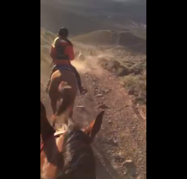Click the image to see video of the incredible view at Hilda's recent ride in Nevada.