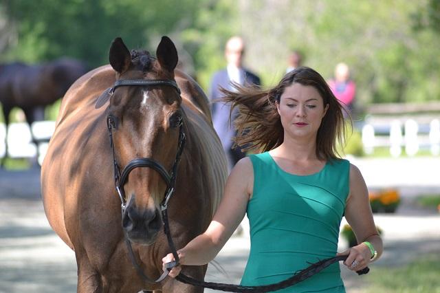 Rachel McDonough & Irish Rhythm. Photo by Leslie Wylie.