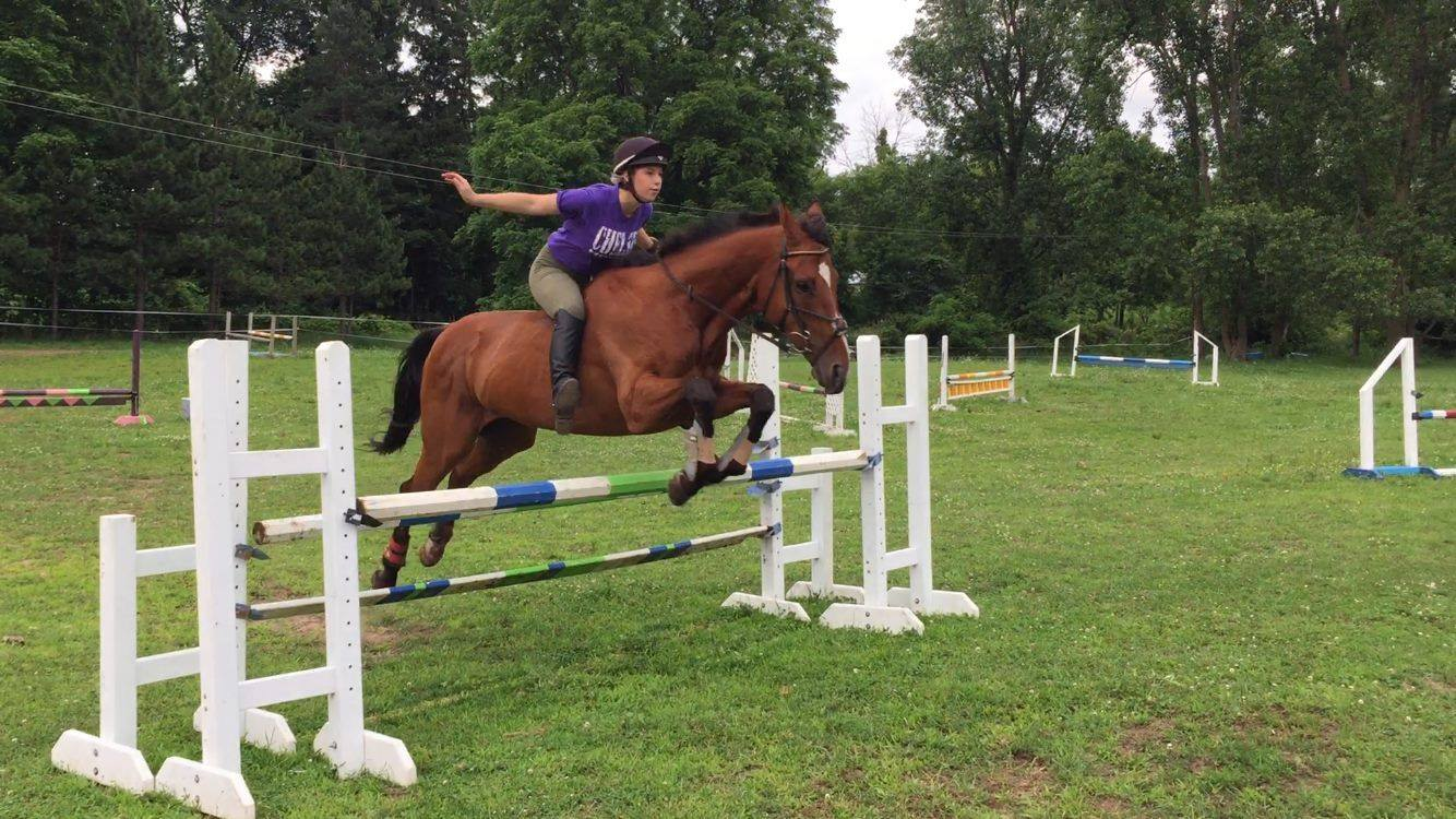 Carrie's student Elizabeth Walter and her horse, Cappie. Photo courtesy of Mulks Eventing.